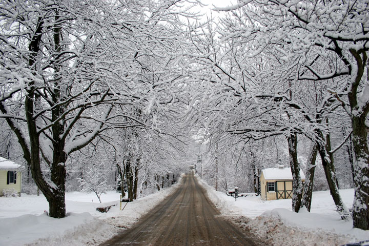 road under snow-covered trees, Massachusetts